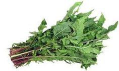 Dandelion Leaves - How to get rid of knee pain fast