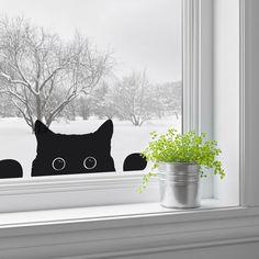 peeping cat window sticker by nutmeg | notonthehighstreet.com