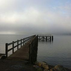 Pt White dock in the fog, Bainbridge Island
