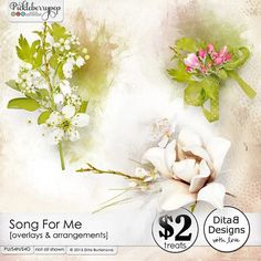 Song For Me - arrangements and overlays By Dita B Designs