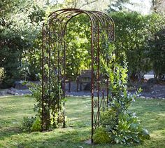 Iron Gate Trellis   Laced with climbing roses or twining vines, this wrought-iron arched trellis lends romance and vertical interest to the terrace, patio or garden bed.