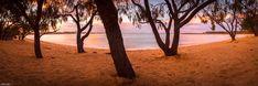 Raw Photography, Photography Gallery, Fashion Photography, Human Eye, Traditional Landscape, Popular Art, Sunshine Coast, Landscape Photographers, Natural Beauty