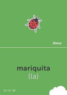 Mariquita #flience #animal #insects #english #education #flashcard #language Spanish Flashcards, English, Insects, Language, Website, Free, Design, German, Building Information Modeling