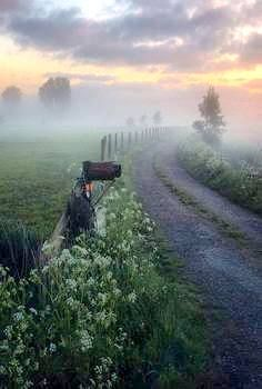 The end of this country lane is exactly where I imagine my homestead. And some people envision sunshine and daisies, but I am a sucker for dewy, foggy morning. Country Life, Country Roads, Foggy Morning, Early Morning, English Countryside, Amazing Nature, Nature Photos, Beautiful Landscapes, Mists