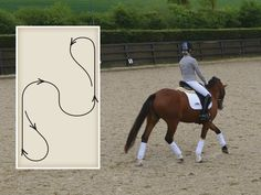 Thirty-minute winter flatwork Sometimes planning and executing an effective schooling session can feel like a mission, Horse&Rider has designed some great schooling plans - Art Of Equitation Horse Riding Tips, Trail Riding, Horse Tips, Horse Exercises, Riding Lessons, English Riding, Horse Training, Training Tips, Training Exercises