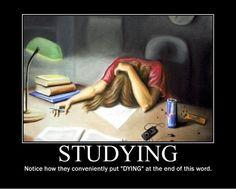 http://www.letssmiletoday.com/pictures/8530-studying