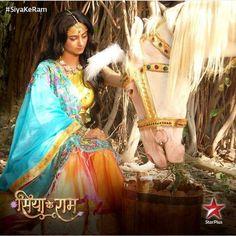 Sita treating the injured Ashwamedh Horse