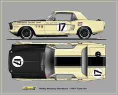 1967 Ford Mustang Shelby - 1967 Trans Am Ford Mustang, Shelby Mustang, Mustang Fastback, Mustang Cars, Classic Mustang, Ford Classic Cars, Vintage Racing, Vintage Cars, Sport Cars