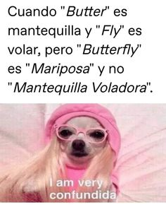Funny Spanish Memes, Spanish Humor, Mundo Meme, Triste Disney, Best Memes, Funny Pictures, Dog Pictures, Funny Quotes, Hilarious