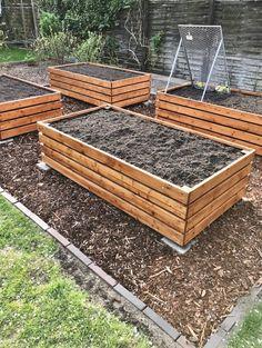 Gemüsebeete: Wie fängt man an? - New ideas Garden Bed Layout, 4c Natural Hair, Backyard Retreat, Raised Garden Beds, Flower Beds, Garden Inspiration, Vegetable Garden, Garden Design, Pergola
