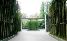 Puli Hotel, Shanghai Tropical Architecture, Landscape Architecture, Landscape Design, Architecture Design, Hotel Architecture, Entrance Signage, Entrance Design, Gate Design, Bamboo Landscape
