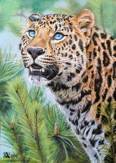 Amur spirit by Azany on deviantART #Art #AnimalArt #Cheetah