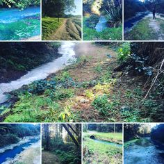Wairakei Resort, Geothermal streams