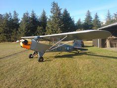 Piper L4 44-80295. 70th Birthday.  27th August 2014
