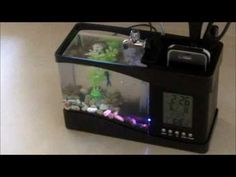 The USB Desktop Aquarium is a fully functioning fish aquarium that fits perfectly on a desk to help liven up an area. It's great for home, dorm or office and is the perfect size for any desk. The multi-function alarm clock and desk caddy make this unique aquarium practical and fun. Get yours @ http://www.cgets.com/USB-Desktop-Aquarium.html
