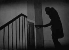 Nosferatu - one curious omission in the DRACULA we know is the relative lack of shadows. A different director might have created some marvelous effects using shadows as did F.W.Murnau.
