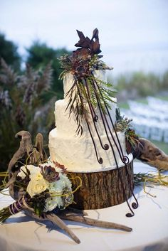 Rustic wedding cake with ferns, wood stand, and succulents // Just Desserts // Kristi Midgette Photography