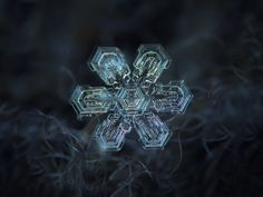 For both photo types, Kljatov actually took a series of pictures of the same snowflake.