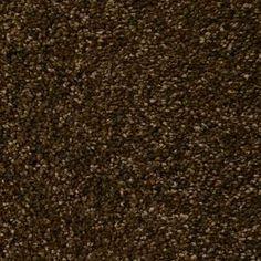 ELEGANT FORM II DARK CHOCOLATE Texture TruSoft® Carpet - STAINMASTER®