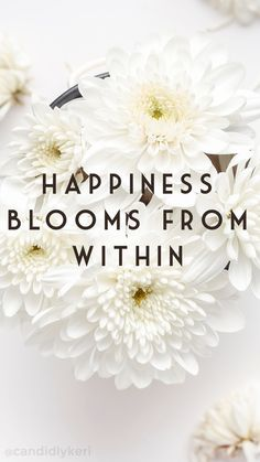 """""""Happiness blooms from within"""" daisy flowers quote inspirational background wallpaper you can download for free on the blog! For any device; mobile, desktop, iphone, android!"""