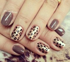 Animal print and beige/gray