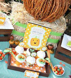 Little Pumpkin Fall Harvest Party