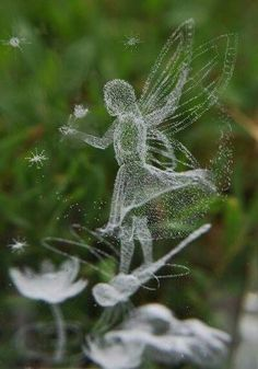 The garden faeries come at dawn, bless the flowers and then they're gone.