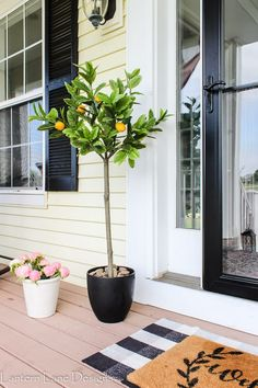 Front Porch Ideas For Summer, Home Accessories, Front porch decor ideas for summer! I'm sharing how I dressed up my front porch this year with summer flowers, lemon trees, outdoor pillows and more. Family Room Decorating, Decorating On A Budget, Porch Decorating, Interior Decorating, Summer Decorating, Affordable Home Decor, Cheap Home Decor, Diy Home Decor, Farmhouse Lighting