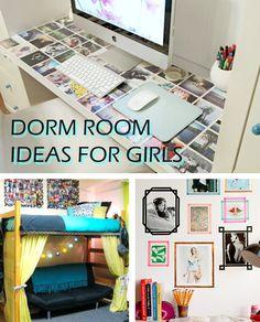 Dorm Life Lynn University Dorm Life Dorm College