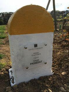 LIMOUX 2014 – TOQUES & CLOCHERS AUX SAVEURS MARINES