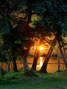 tropicalism:  Tropical Sunset by Howard Somerville on Flickr.