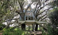 Abandoned-victorian-tree-house-52ae44df7ecf17003400073a