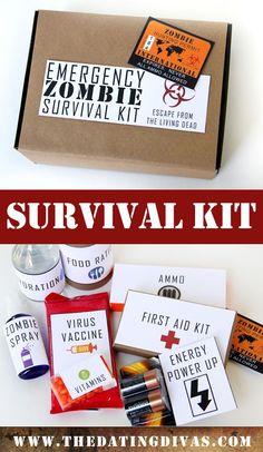 45 Best zombie doomsday kit images   Survival kit ...