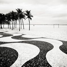 Copacabana Palms II - Rio de Janeiro, Brazil, 201050 x 50 cm, ed.10 | 100 x 100 cm ed.5 | 150 x 150 cm ed.5 Silver Gelatin Print, Caixa de Acrílico ou Madeira  josef hoflehner