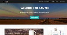 20 Best Yet Free WordPress WooCommerce Themes