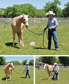 """Ty Brazeal offers advice to help a horse past his tendency to spook at what the rider calls """"everything,"""" despite her best efforts to desensitize the horse to the upsetting stimuli."""