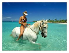 Roatan Honduras - I have been here many times for diving but riding horses on the beach here is amazing!