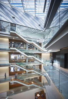 Gallery of Allen Institute / Perkins+Will - 2