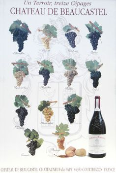 13 Cepages: Châteauneuf-du-Pape can contain up to 13 grape varieties in a blend - wine:art