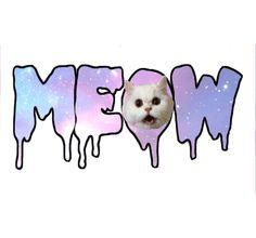 meow kittycat ~ pastel