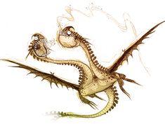 Dragons_bod_zippleback
