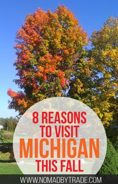 There are tons of great things to do in Michigan in the fall. Detroit | Thanksgiving parade | Oktoberfest | Frankenmuth | Michigan football | Fall foliage | Zoo Boo | Greenfield Village | Cider Mills | #Michigan | #Detroit | #Thanksgiving | #FallDestination