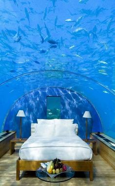 Sleep with the fishes in an entirely new manner in this stunning underwater hotel! Immersed deep in the crystalline waters of the Indian Ocean, the Conrad hotel provides guests with unparalleled views of the underwater ecosystem. Underwater Hotel Room, Underwater Homes, Asian Decor, Beautiful Hotels, Beautiful Places, Dream Rooms, Cool Rooms, Contemporary Decor, Home Interior Design