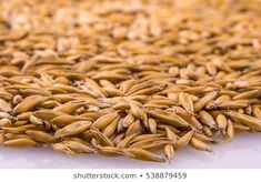 natural oat grains with shadow for background, closeup shot. Heap of organic oat grains with wooden spoon, healthy food and nutrition. Healthy Food, Healthy Recipes, Diet Supplements, Nutrition Diet, Wooden Spoons, Green Beans, Grains, Organic, Stock Photos