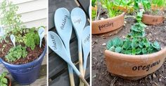 Top 10 Creative Garden Markers