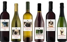So many different Pug Wines! Who knew!