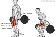 Barbell hack squat exercise