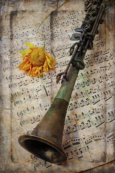 Clarinet And Old Sunflower by Garry Gay Clarinet Jokes, Clarinet Sheet Music, Trumpets, Custom Guitars, Indie Music, Soul Music, Decorative Bells, Instruments, Wall Art