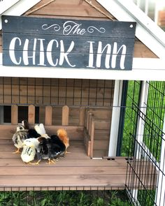 What chicken coop DOESN'T need an adorable sign or some other accent piece to make it feel like home? The right sign or toy for your flock can turn a ho hum Cute Chicken Coops, Chicken Coop Decor, Chicken Coop Signs, Diy Chicken Coop Plans, Chicken Coup, Chicken Garden, Backyard Chicken Coops, Chicken Feeders, Chicken Life