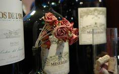 Priorat Wine Bottles